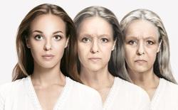Không gì có thể cản lại quá trình lão hóa: nghiên cứu mới dập tan mọi tranh cãi xung quanh khả năng bất tử