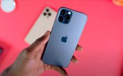 iPhone 13 sẽ có giá bán tương đương iPhone 12, không có bản 1TB