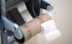 Elon Musk so sánh tình trạng khan hiếm chip toàn cầu với khủng hoảng… giấy vệ sinh