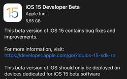 Hướng dẫn nâng cấp lên iOS 15 Beta