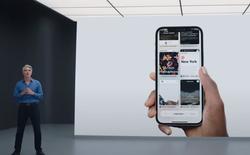 Apple vừa mượn 2 tính năng của Chrome để nâng cấp cho Safari trên iOS 15