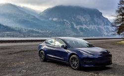 Khi VinFast vào Mỹ, Tesla lãi vài tỷ đô nhờ một loại 'tem phiếu' mà chẳng cần bán chiếc xe nào - chuyện gì đang diễn ra?