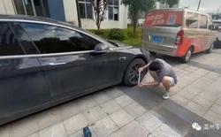 Cài số lùi nhưng xe lại tiến, chủ sở hữu Model 3 nói mình đã bị Tesla 'lật đổ tam quan'