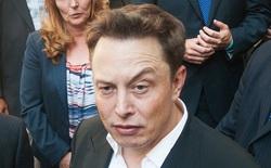 Ám ảnh với những cơn thịnh nộ của Elon Musk, nhân viên Tesla thậm chí bị cấm tới gần bàn làm việc của sếp