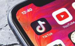 TikTok bắt đầu cấm các quảng cáo tiền ảo để tránh người dùng gặp phải những câu chuyện đáng tiếc