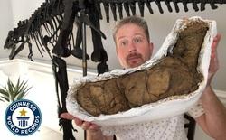 Bất ngờ phát hiện một loài hoàn toàn mới trong đống phân cách đây hơn 200 triệu năm!