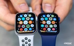 Apple có hơn 100 triệu người dùng Apple Watch