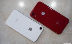 Tại sao đến giờ Apple vẫn bán iPhone XR với giá 499 USD?
