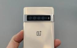 Hoá ra OnePlus từng có một chiếc smartphone với thiết kế giống hệt Pixel 6