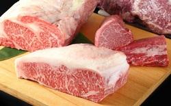Đỉnh cao công nghệ là đây: Nhật Bản dùng công nghệ in 3D sinh học tạo ra miếng bò Wagyu đầu tiên. Sắp đến ngày người dùng được ăn thịt bò Wagyu mà không cần giết mổ bất cứ con bò nào