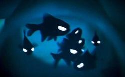 Đây là những sinh vật có thể tự phát quang mà ai cũng nghĩ rằng chúng không có thật!