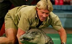 """Cái chết nghiệt ngã của """"thợ săn cá sấu"""" Steve Irwin: Nhà động vật học hàng đầu thế giới và câu chuyện """"sinh nghề tử nghiệp"""""""