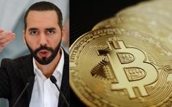 Giá Bitcoin lao dốc về dưới 45000 USD, tổng thống một quốc gia lập tức tranh thủ bắt đáy