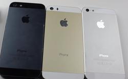 Soi độ bền vỏ iPhone 5S màu rượu sâm panh bằng dao và tiền xu