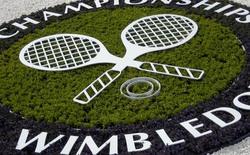Youtube sẽ truyền trực tiếp giải quần vợt Wimbledon