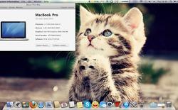 Hướng dẫn cài đặt OS X Mountain Lion 10.8.2 cho một số laptop Asus