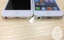 iPhone giá rẻ tiếp tục xuất đầu lộ diện, dày hơn một chút so với iPhone 5