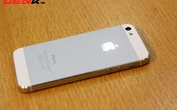 Đón chào iPhone 5s, iPhone 5 giảm giá nhẹ tại Việt Nam