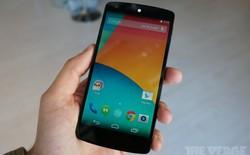 Chọn Nexus 5 hay Nokia Lumia 1520?