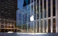 Xôn xao chuyện nhiều cửa hàng Apple Store đóng cửa sớm bất thường