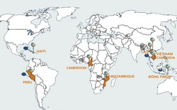 Viettel bắt đầu 'hái quả ngọt' từ châu Phi và châu Mỹ?