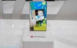 Thực tế màn hình LCD Oxide TFT của LG