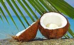Tìm hiểu một số công dụng thú vị từ cây dừa