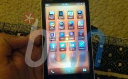 Thua lỗ kéo dài, BlackBerry vẫn muốn ra thêm sản phẩm mới