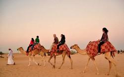 Điểm mặt những sa mạc lớn nhất thế giới (phần 2)