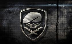 Lính biệt kích Mỹ Ranger – họ là ai ?