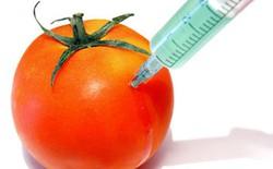 Đôi nét về thực phẩm biến đổi gen