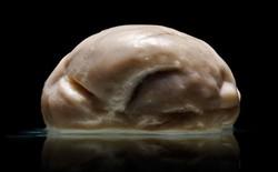 """""""Não phẳng"""" hoàn toàn có thật"""