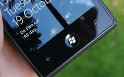 LG đang phát triển cả smartphone Windows Phone 8.1 và 9