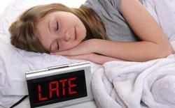 Người ngủ dậy muộn có khả năng làm việc tốt hơn