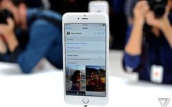 iPhone 6 Plus cháy hàng trước thời điểm chính thức lên kệ