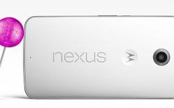 Nexus 6 lọt vào top 10 smartphone có camera tốt nhất theo đánh giá của DxOMark
