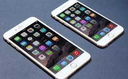 Vì sao người Việt chuộng iPhone 6 Plus?