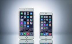 Giá iPhone 6/Plus chi tiết của FPT, Viettel, VinaPhone