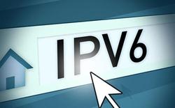 Các báo điện tử, mạng xã hội bắt đầu chuyển đổi sang IPv6