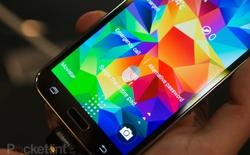 Samsung xác nhận Galaxy S5 mini có thể chống được nước