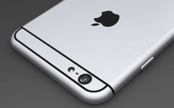 iPhone 6 màn hình 5,5 inch hoãn ra mắt sang năm sau?
