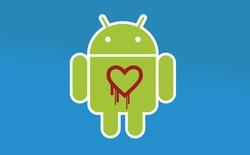 """Hàng triệu thiết bị chạy Android 4.1.1 có thể dính lỗi """"Trái tim rỉ máu"""""""