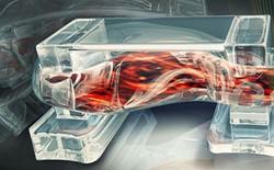 Cơ bắp robot sinh học được tạo ra giống hệt con người
