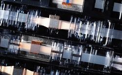 Sony phát triển thành công loại băng từ có thể lưu trữ gần 200 TB dữ liệu