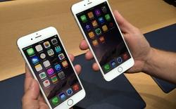 iPhone 6 Plus chỉ sở hữu 1 GB RAM?
