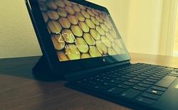 Microsoft bán laptop cạnh tranh Surface ngay trên cửa hàng của mình