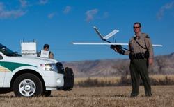 Máy bay không người lái sẽ được sử dụng để bảo vệ động vật hoang dã