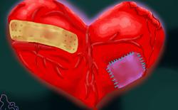 Các trang Muachung, Rongbay, Enbac, Sohapay không liên quan tới lỗi OpenSSL Heartbleed