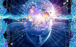 Các nhà khoa học tìm hiểu bí ẩn giác quan thứ 6