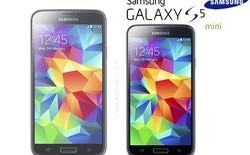 Galaxy S5 mini sẽ có bản 2 SIM tại Châu Á